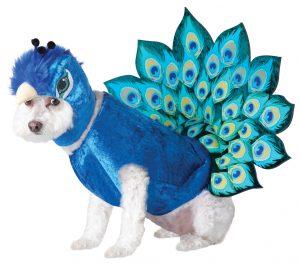 PET20117_Peacock