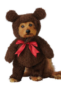 PET20162_TeddyBear copy
