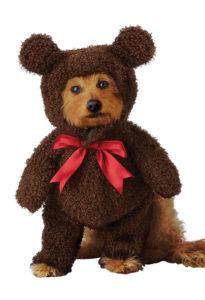 PET20162_TeddyBear copy