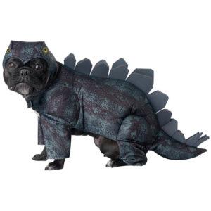 PET20168_Stegosaurus