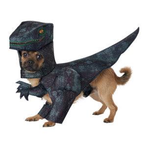 PET20169_Pupasaurus