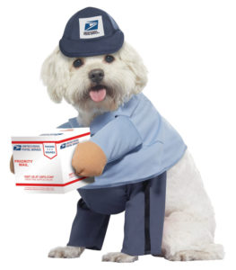 PET20170_USMailCarrierPup